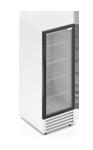 Шкаф холодильный со стеклом FROSTOR RV 400 G